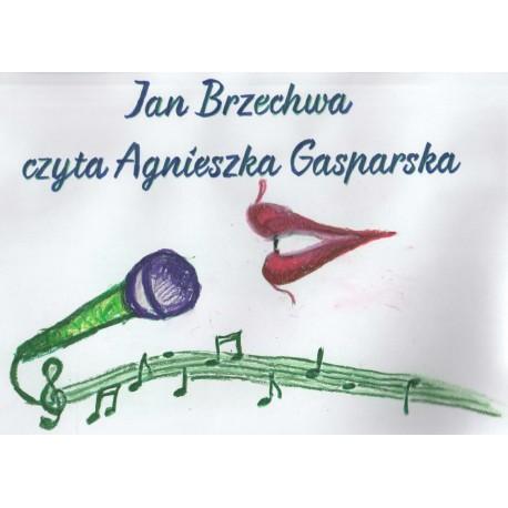 Audiobook Jana Brzechwy - zbiorczy